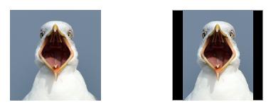 Square Emoji vs Rectangular Emoji